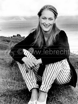 http://lebrecht.files.wordpress.com/2009/06/110851_meryl-streep.jpg